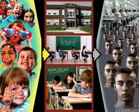 Leave Those Kids Alone: Cultural Marxism and the Failed Miseducation System