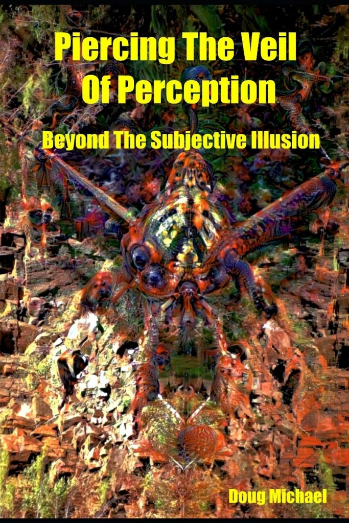 piercing the veil of perception book cover