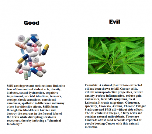Good evil ssri cannabis
